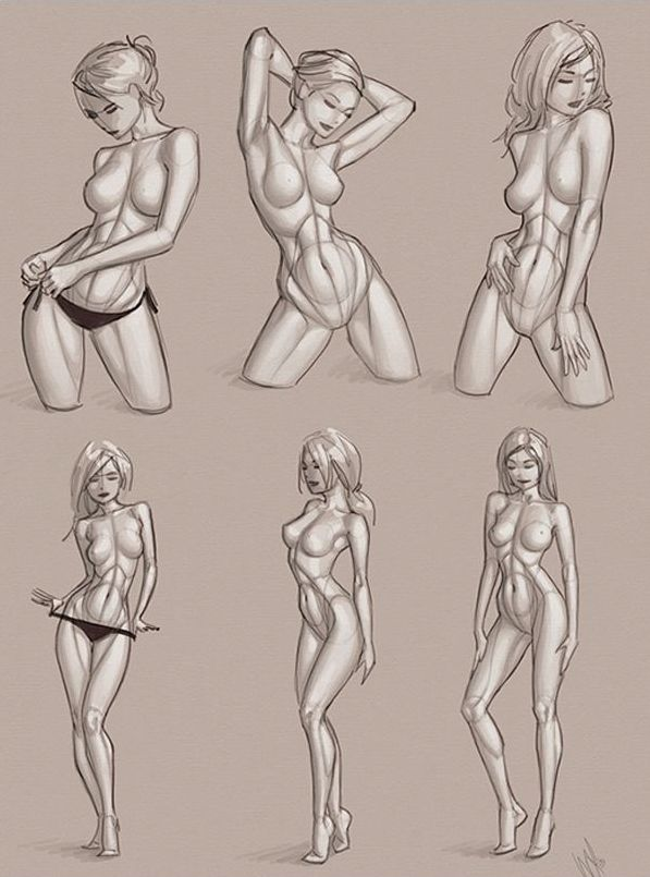 597x805 13 Best Female Anatomy Scamps Images On Anatomy