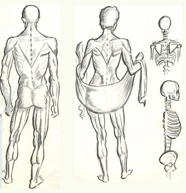 646x671 how to draw the human figure drawing body head facial features