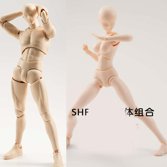 640x640 Male And Female Painted Art Doll Carton Drawing Model Human Body