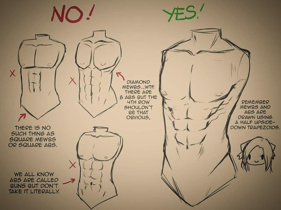 957x717 How To Draw A Male Upper Body Part Drawing References