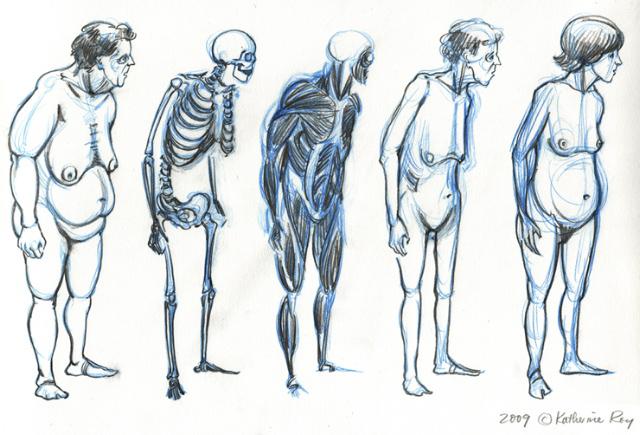 640x435 Kriotawelt Anatomy For Cartoonists Workshop