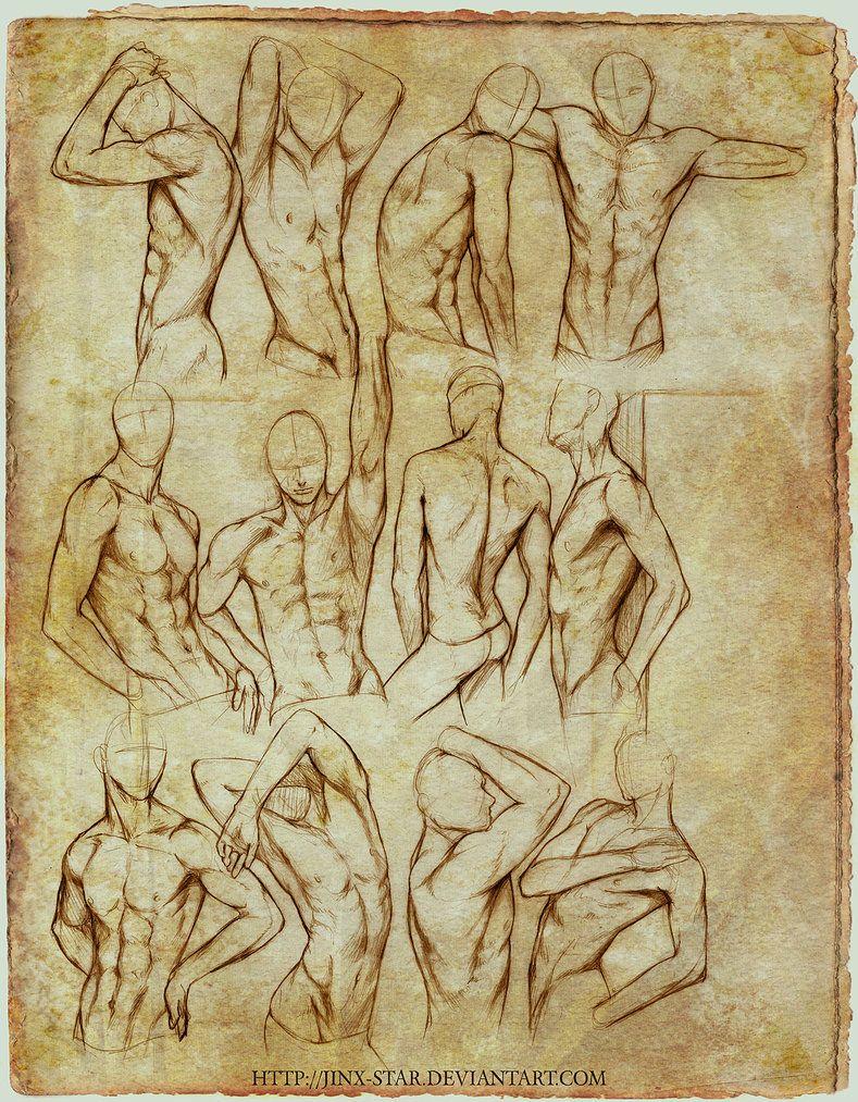 789x1013 Male Body Study Ii  By =jinx Star On Anatomy Human