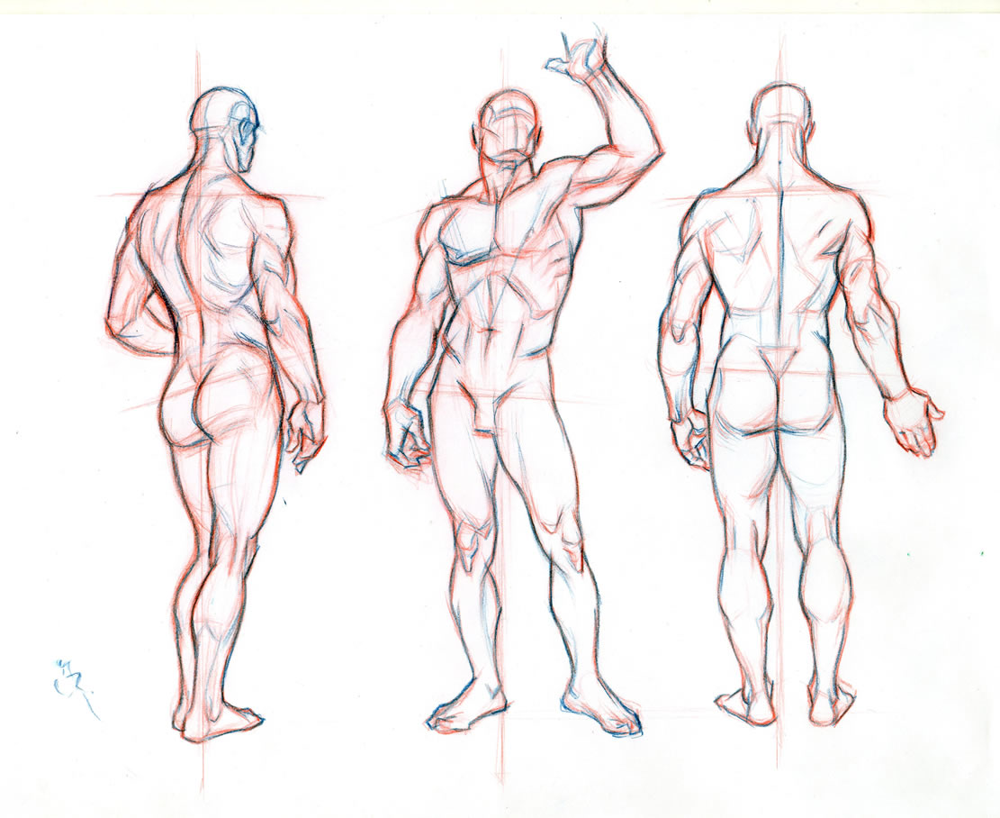 1111x908 Nice Male Body Drawing Template Ideas