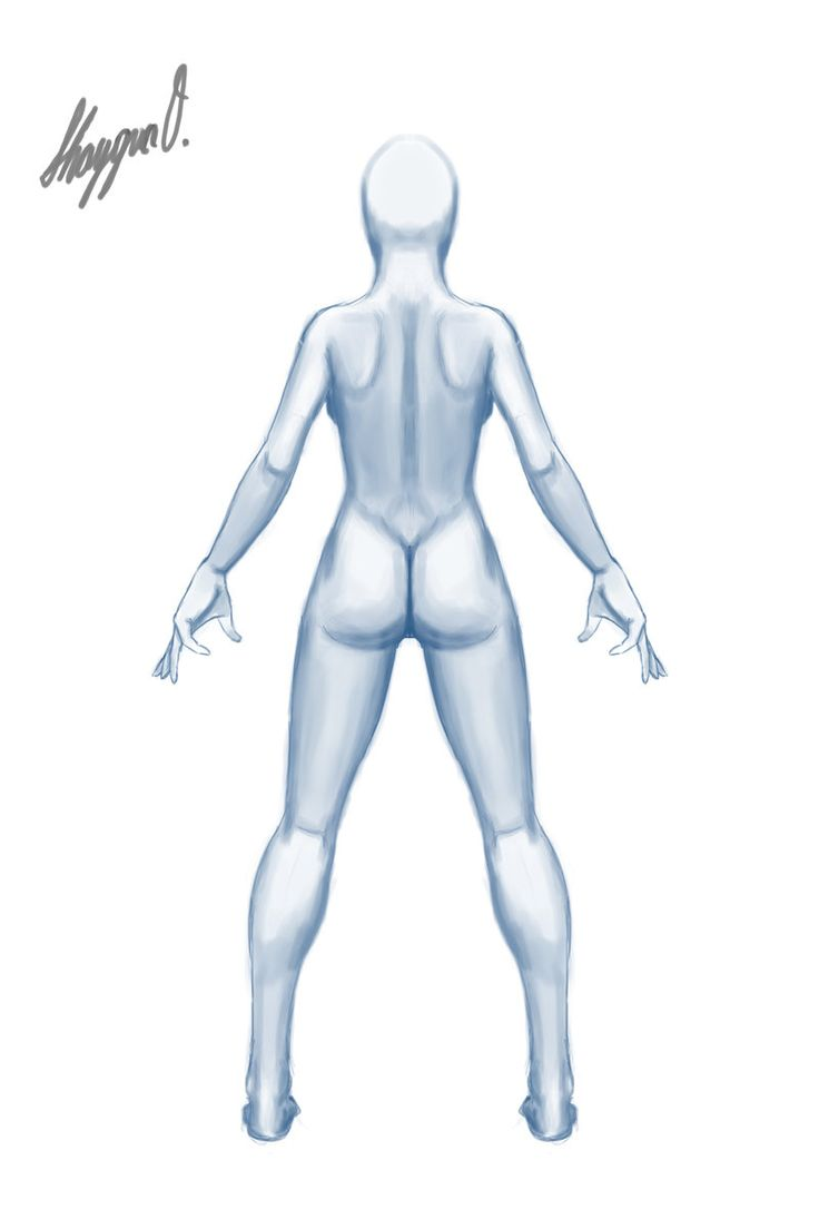 Outstanding Female Anatomy For Artists Free Motif - Anatomy Ideas ...