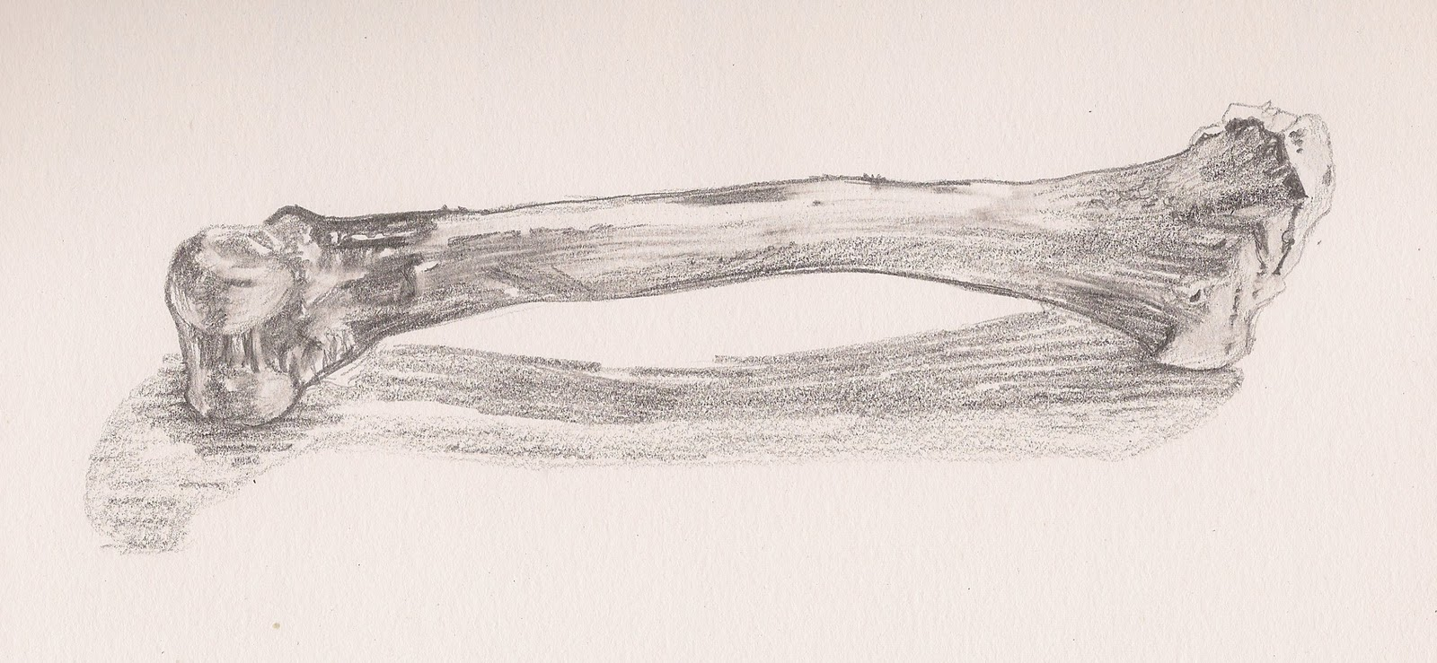 1600x739 Sketch A Day 2011 12111