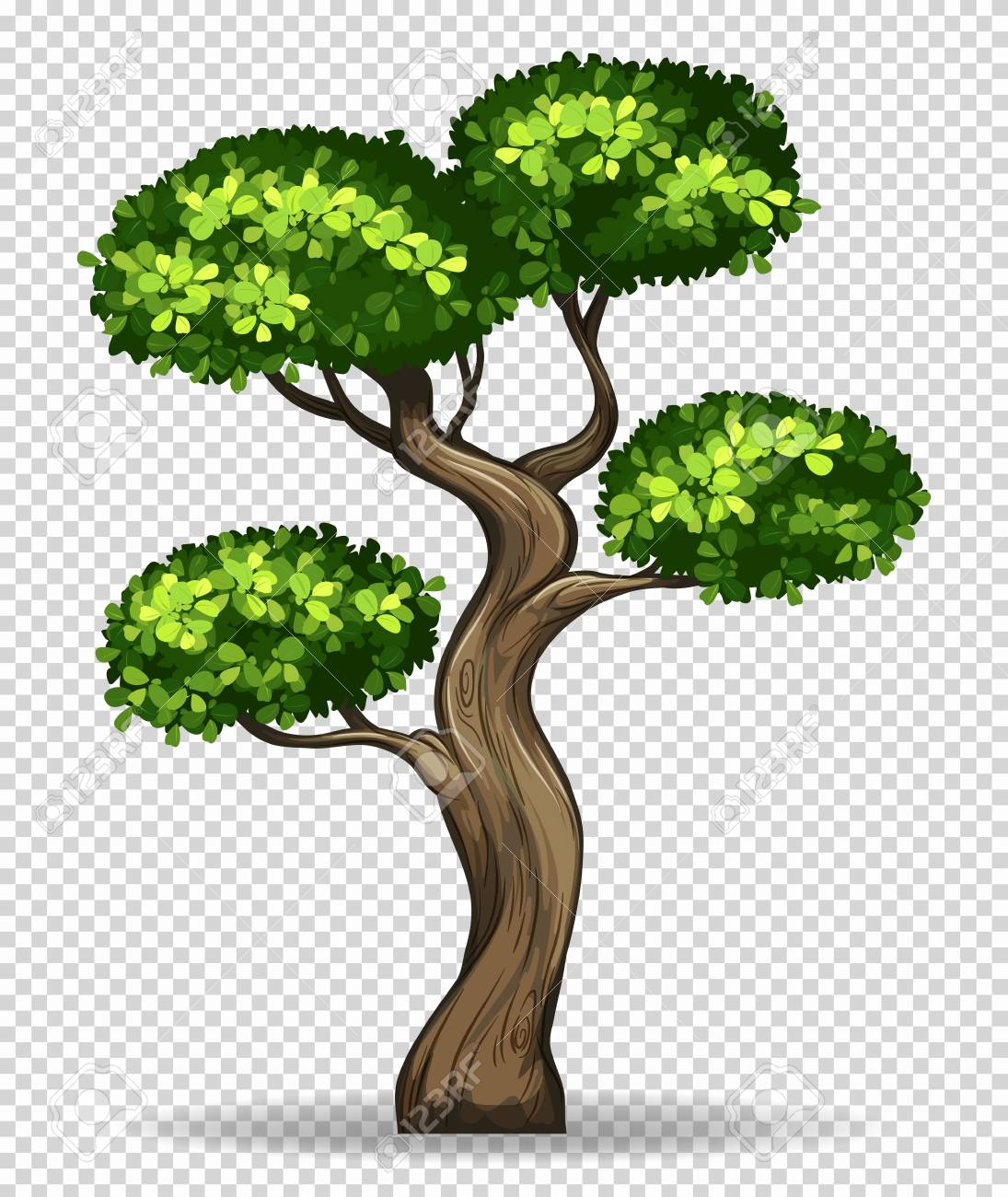 Bonsai Tree Drawing at GetDrawings.com   Free for personal use ...