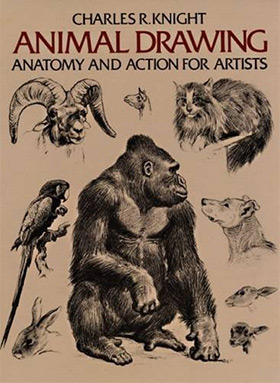 280x383 Best Books For Learning To Draw Animals Anatomy Amp Technique