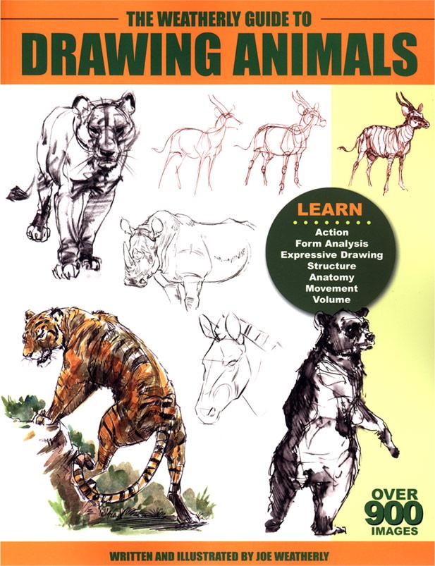 617x803 The Weatherly Guide To Drawing Animals Joe Weatherly Fine Art