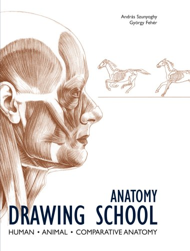 380x500 Best Anatomy Books For Artists (Some Of My Favourites) Parka Blogs