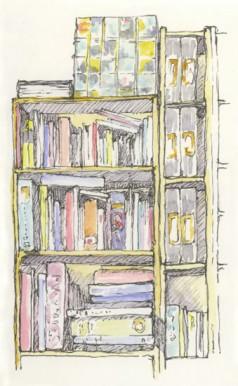 238x386 Bookshelf Drawing