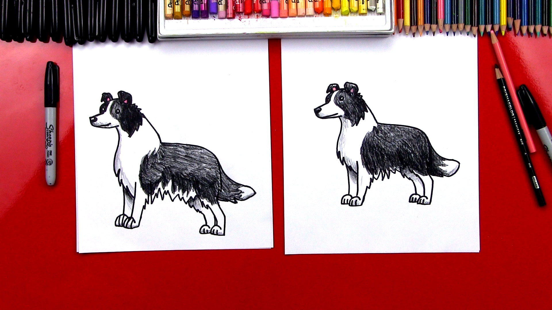 1920x1080 How To Draw A Border Collie