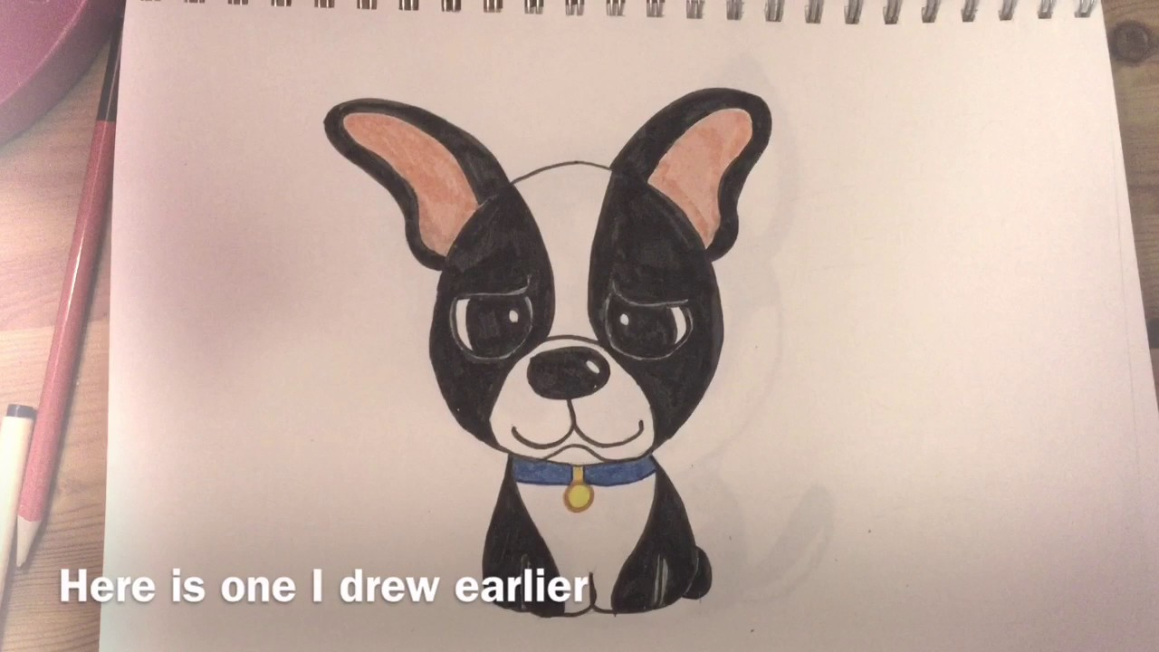 1280x720 How To Draw A Cute Boston Terrier