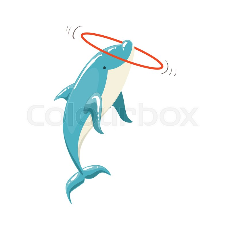 800x800 Blue Bottlenose Dolphin Holding Hula Hoop For Entertainment Show