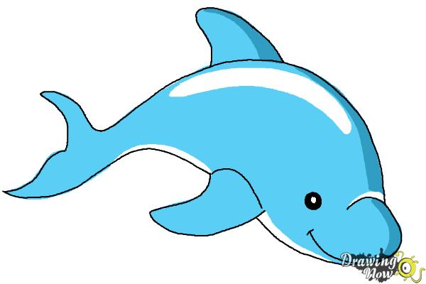 600x400 How To Draw A Dolphin