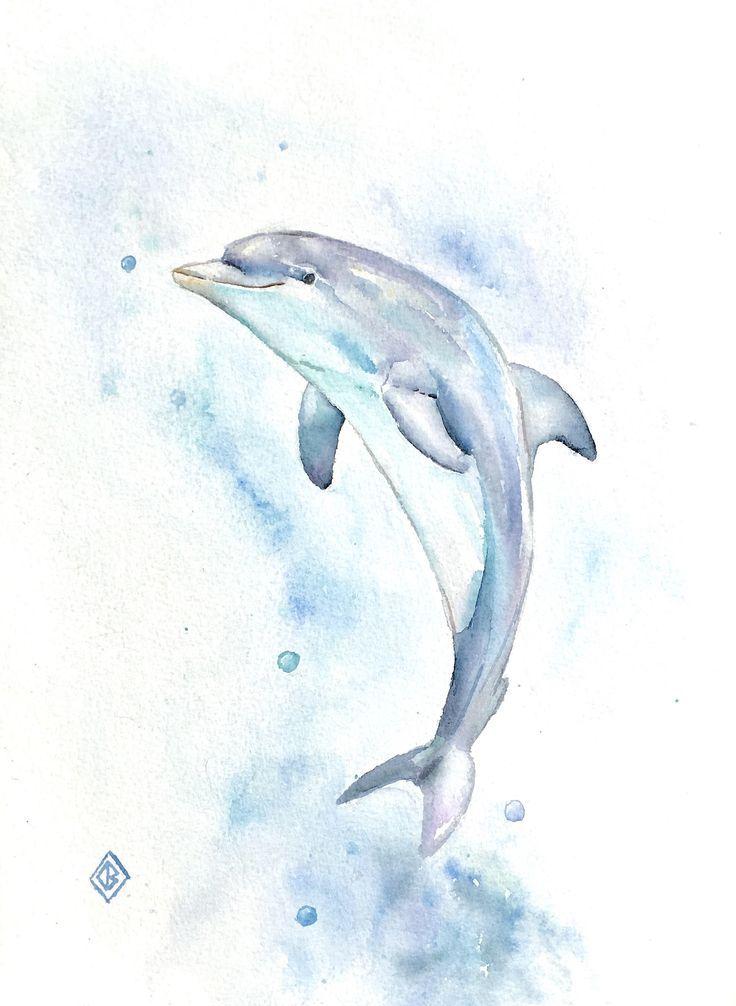 736x1006 Easy Dolphin Paintings Best Dolphin Art Ideas
