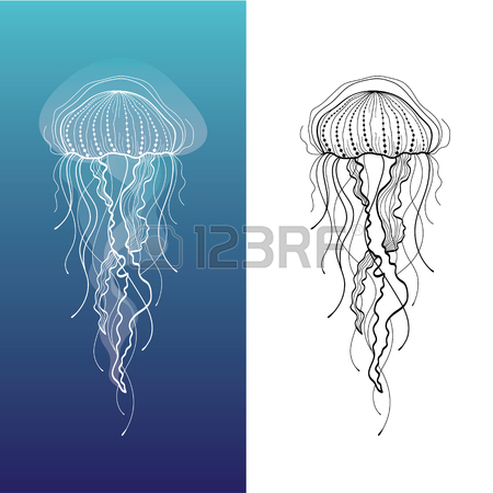450x450 Jellyfish Stock Photos. Royalty Free Business Images