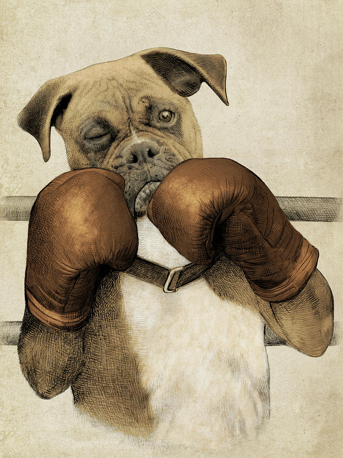 675x900 The Boxer Drawing By Eric Fan