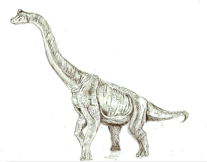 698x547 Brachiosaurus The Mighty By Aspieomnipintent