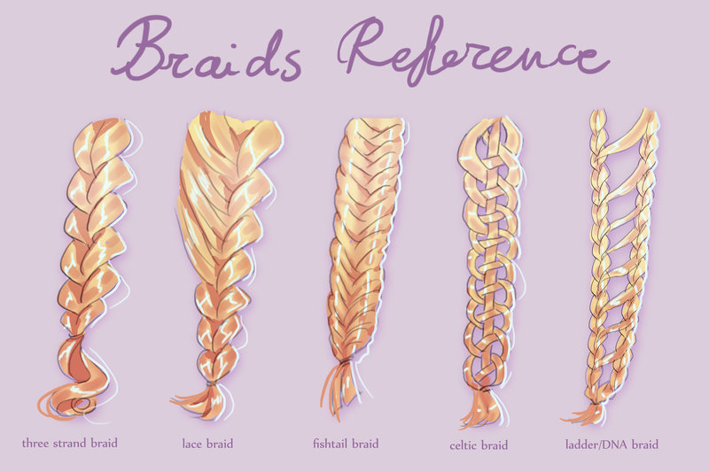 800x533 Braids Reference Sheet By Sillyselly