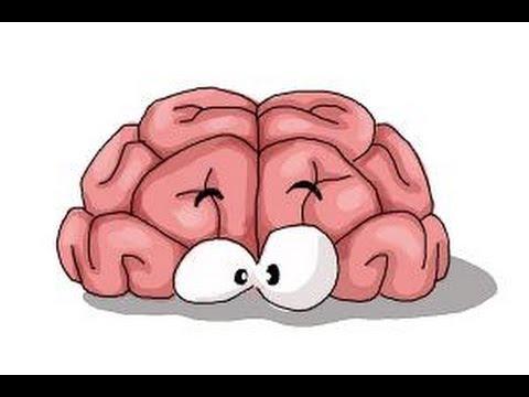Brain Cartoon Drawing at GetDrawings   Free download