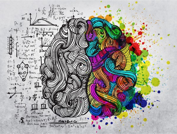 600x455 The Interaction Between The Brain Hemispheres While Drawing