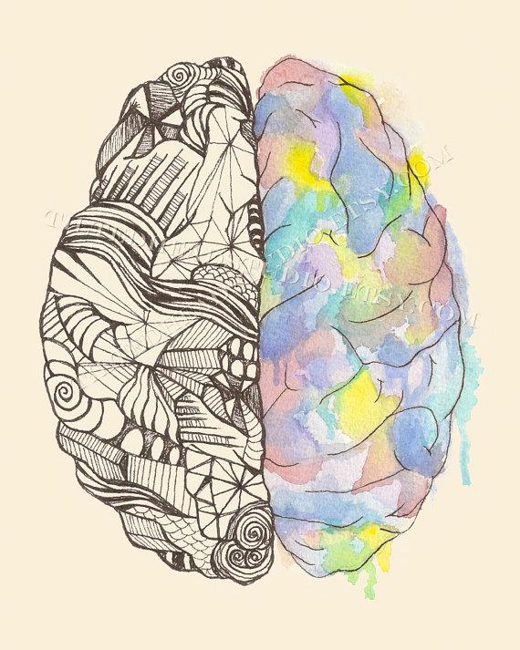 570x713 Brain Hemispheres Print Neurology Mbti Myers Briggs Duality