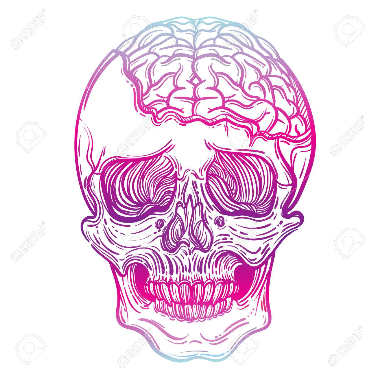 1300x1300 Vector Illustration With A Human Skull And Brains. Gothic Brutal
