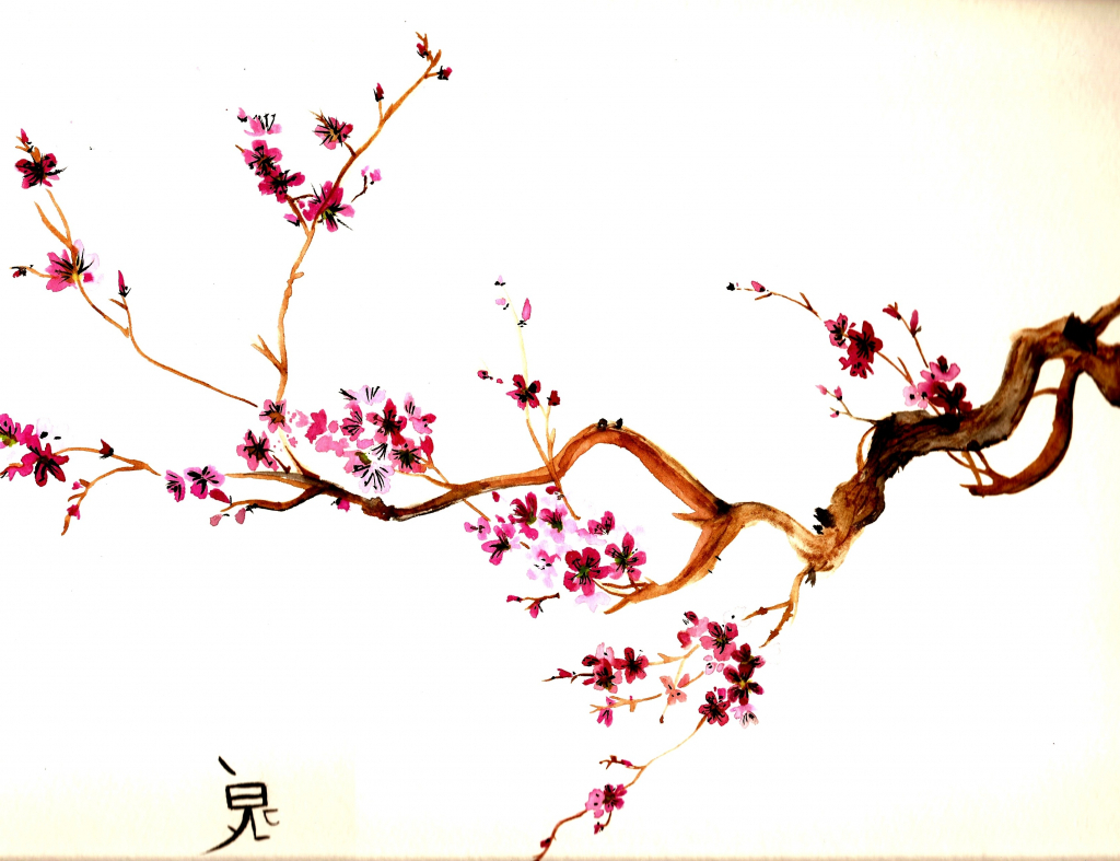 1024x787 Cherry Blossoms Drawing Easy How To Draw A Sakura Cherry Blossom