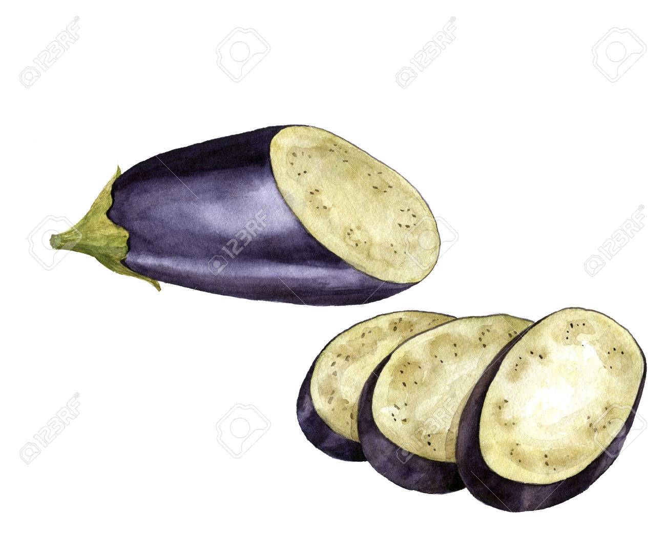 1300x1083 Watercolor Drawing Half And Slices Of Eggplant,isolated At White