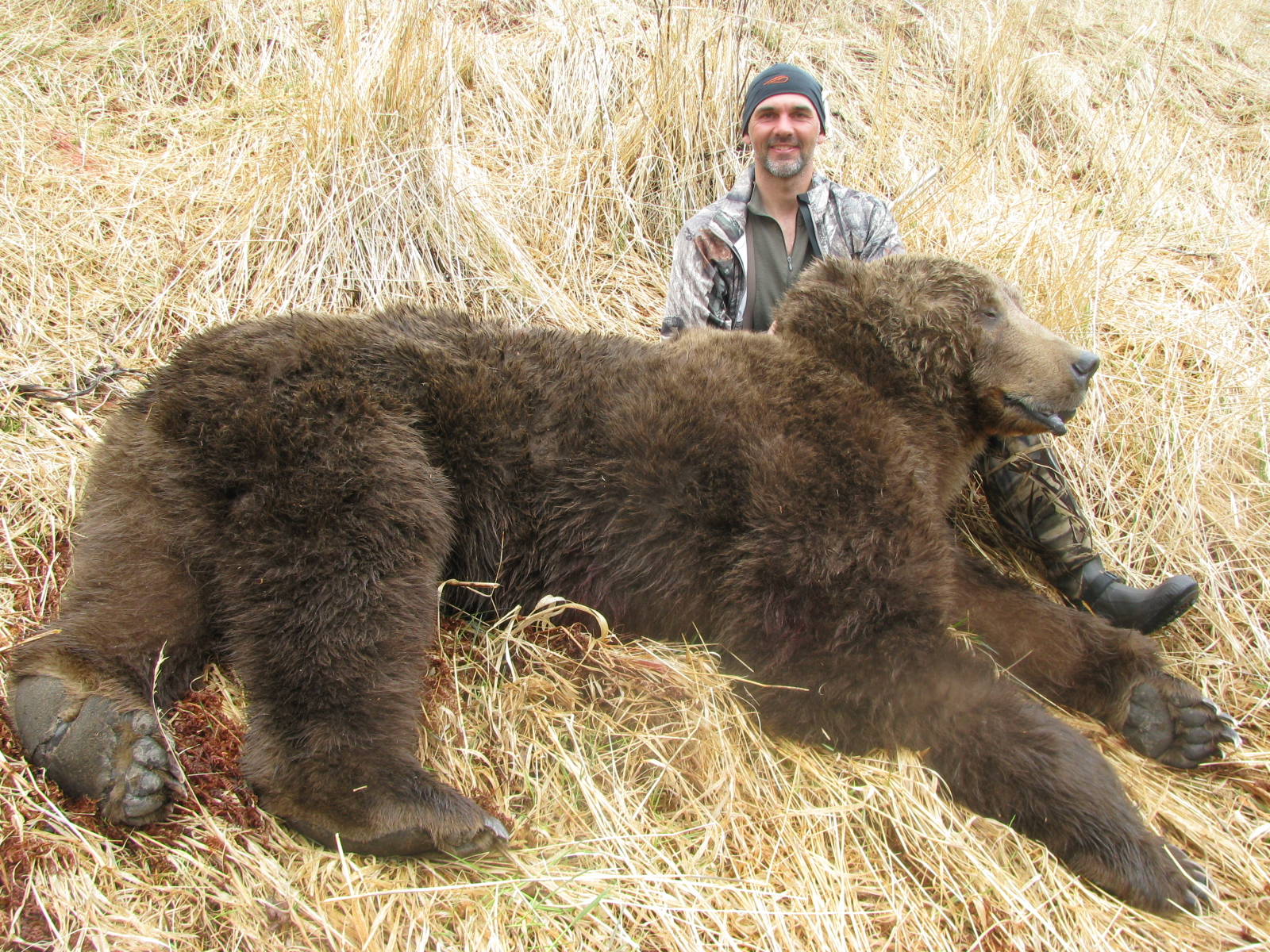 1600x1200 Kodiak Brown Bear Hunting