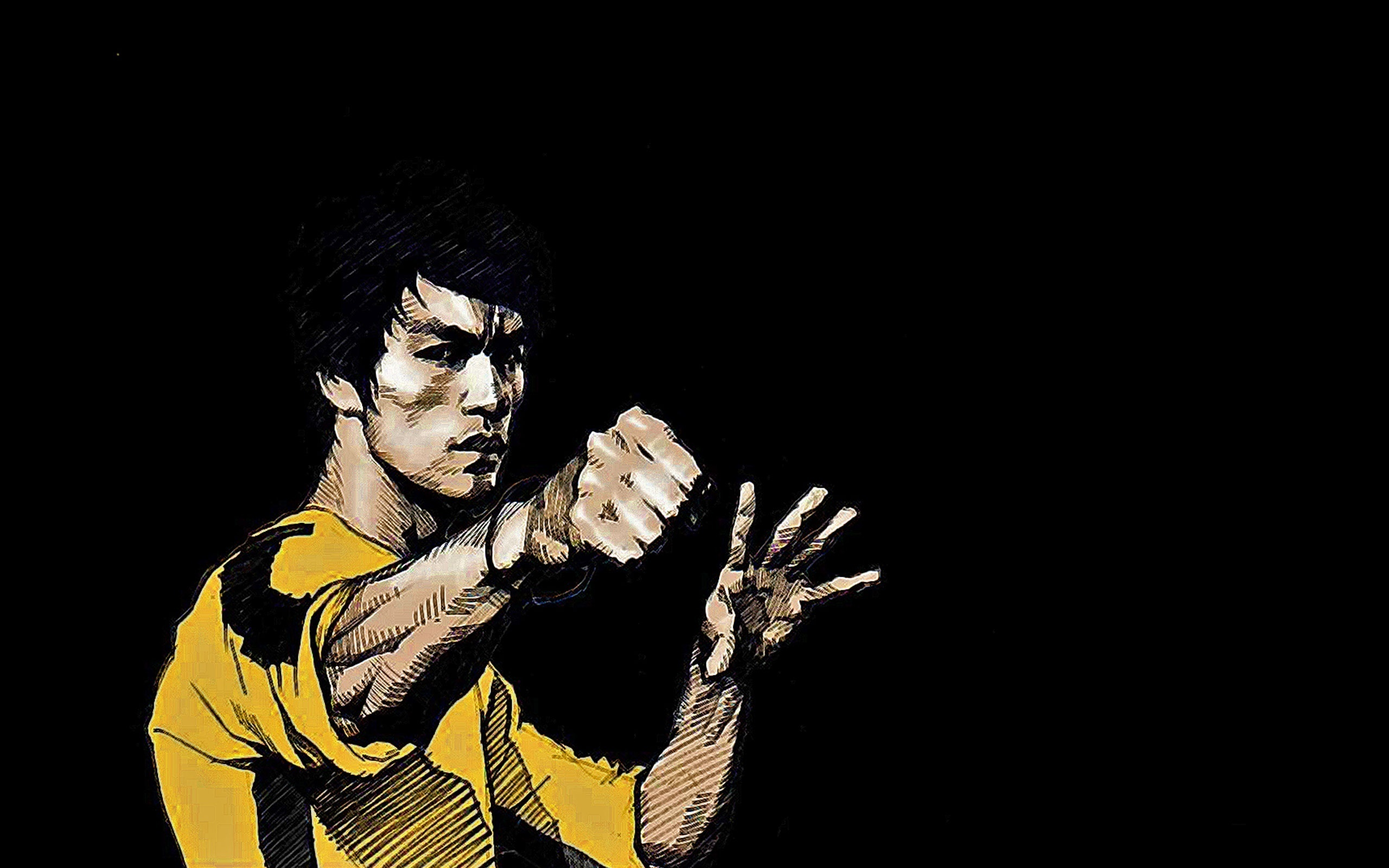 2560x1600 Bruce Lee Drawing Bruce Master Of Kung Fu