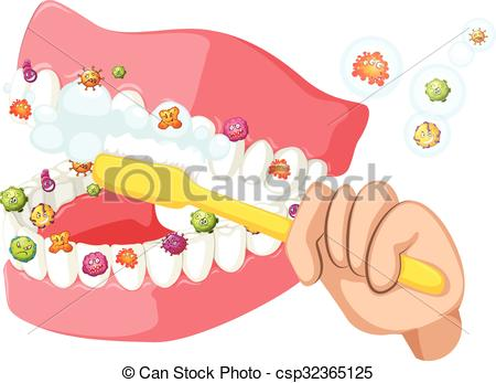 450x347 Brushing Teeth And Cleaning Out Bacteria Illustration Vector