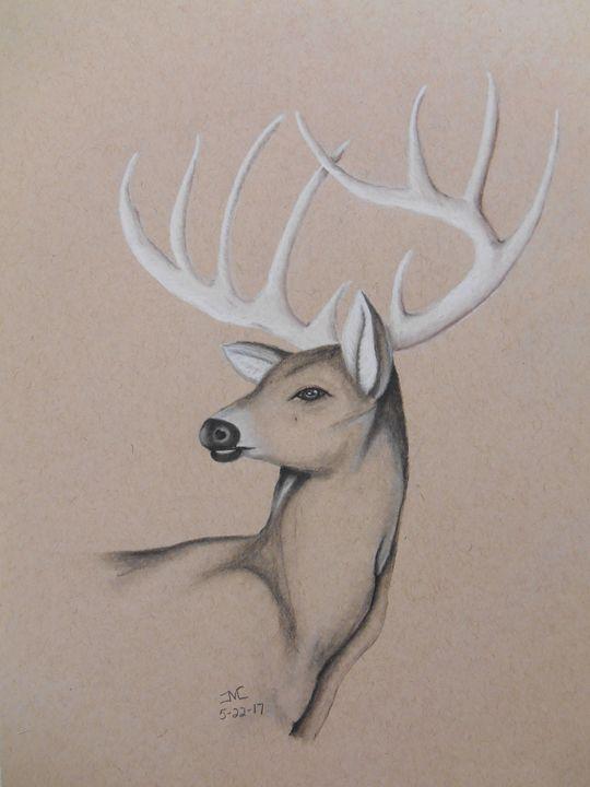 540x720 10 Point Buck