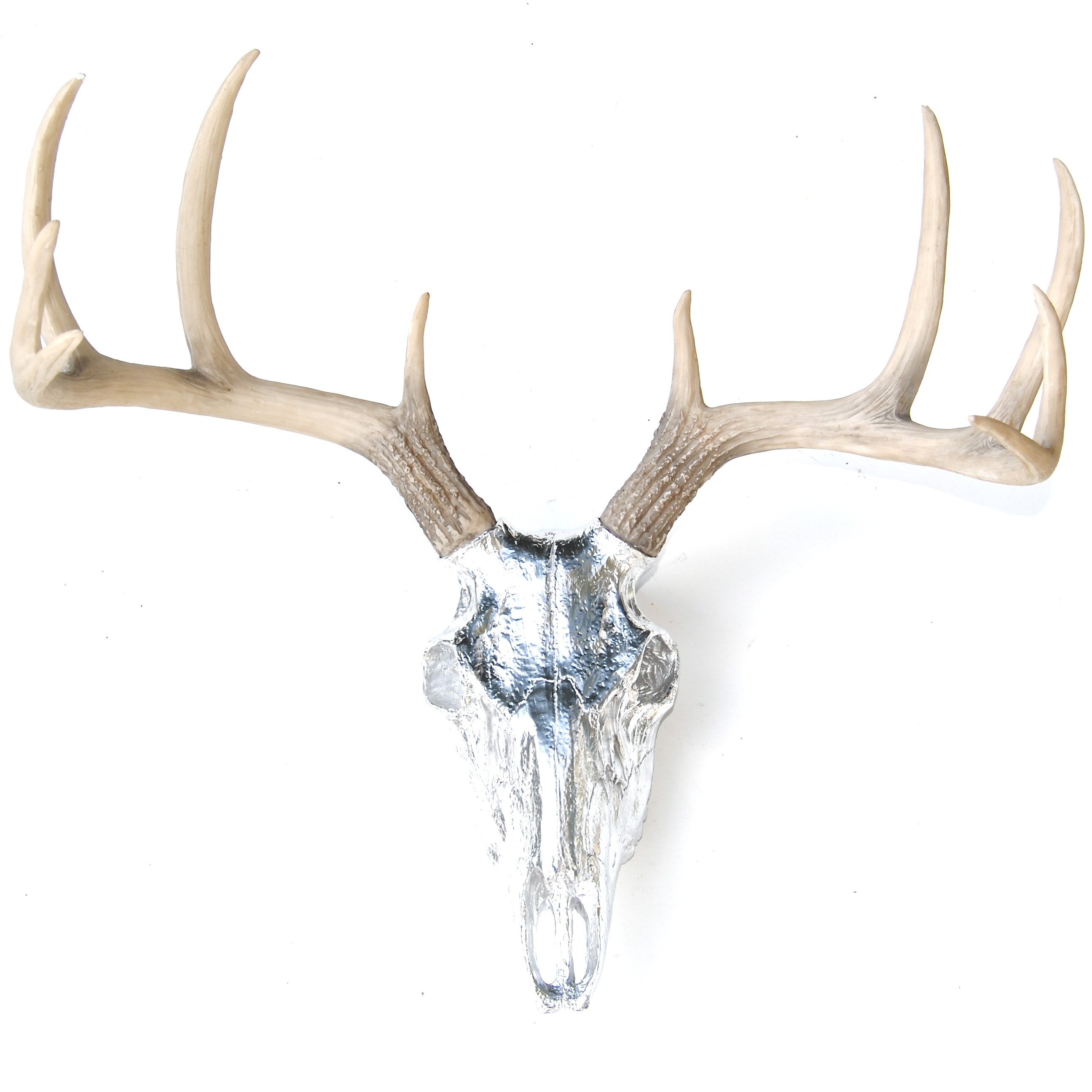 Buck Skull Drawing at GetDrawings com | Free for personal use Buck