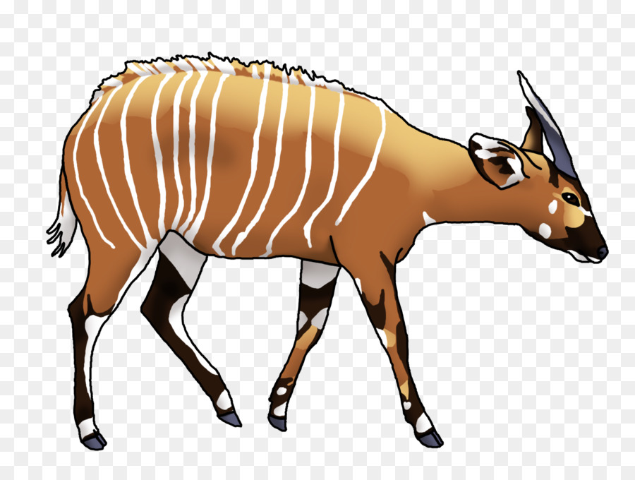 900x680 Antelope Bongo Drum Cartoon Drawing Clip Art