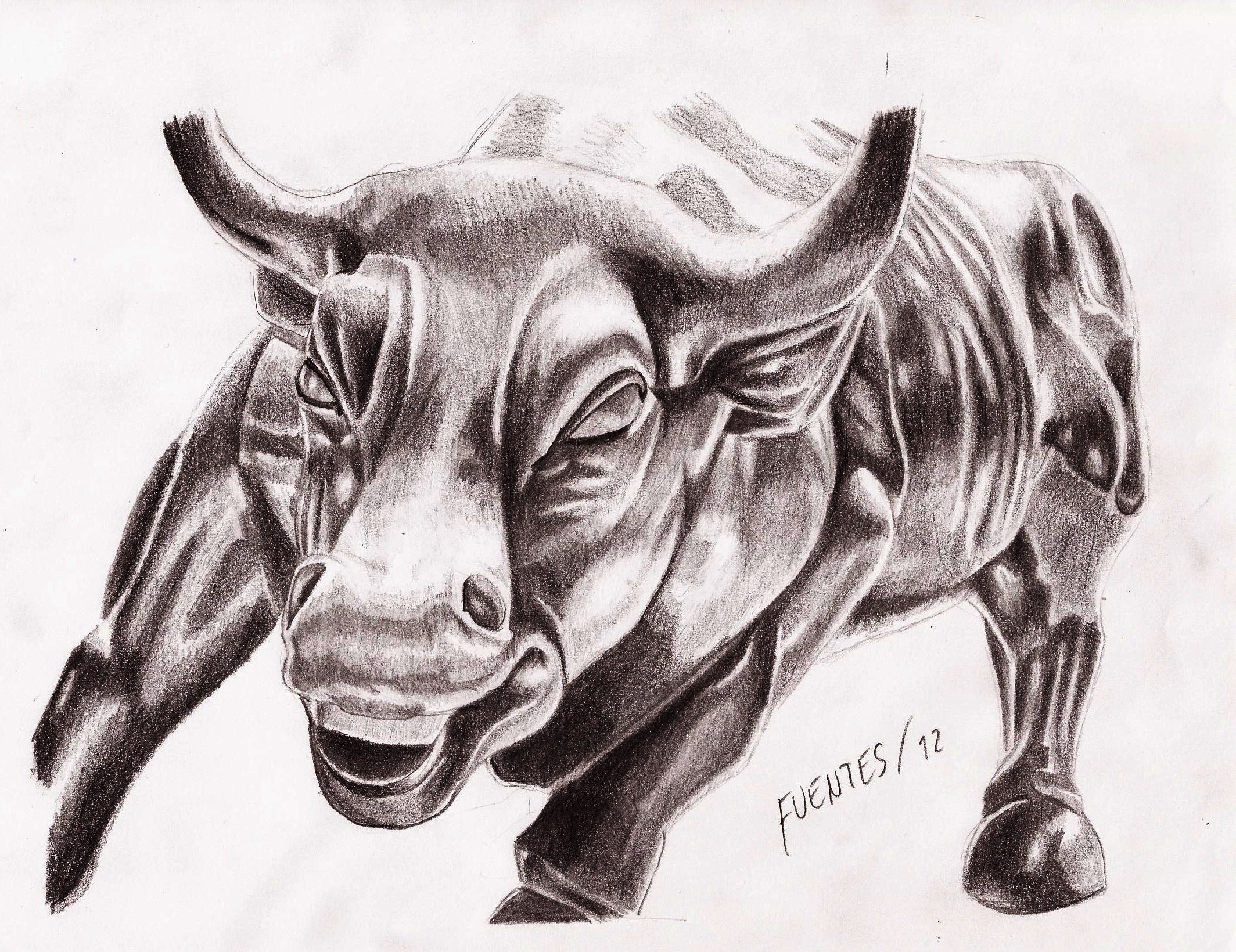 2128x1640 Wall Street Bull Pencil Drawing Fuentes H.