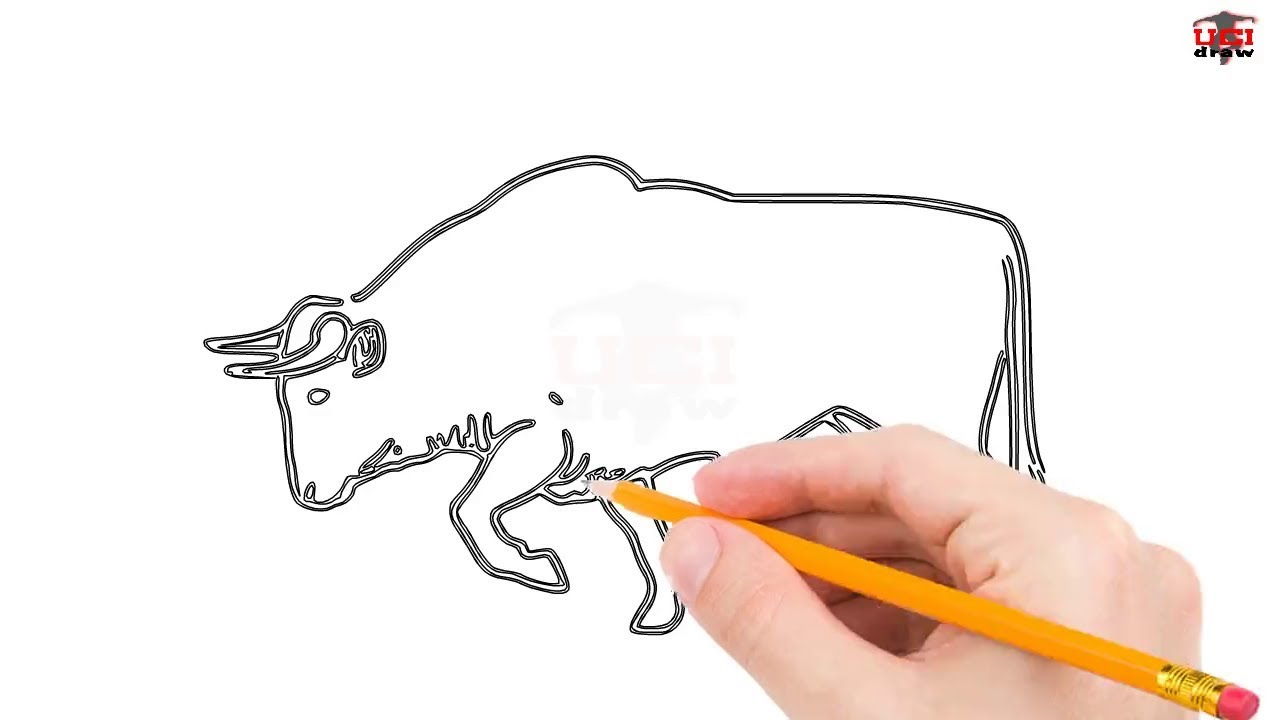 1280x720 How To Draw A Bull Step By Step Easy For Beginnerskids Simple