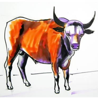 371x371 How To Draw A Bull