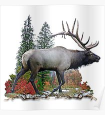 210x230 Bull Elk Drawing Posters Redbubble