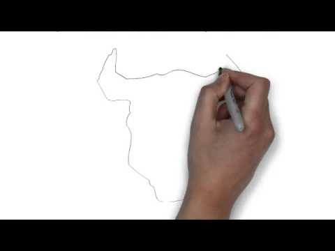480x360 How To Draw A Black And White Face Of A Bull
