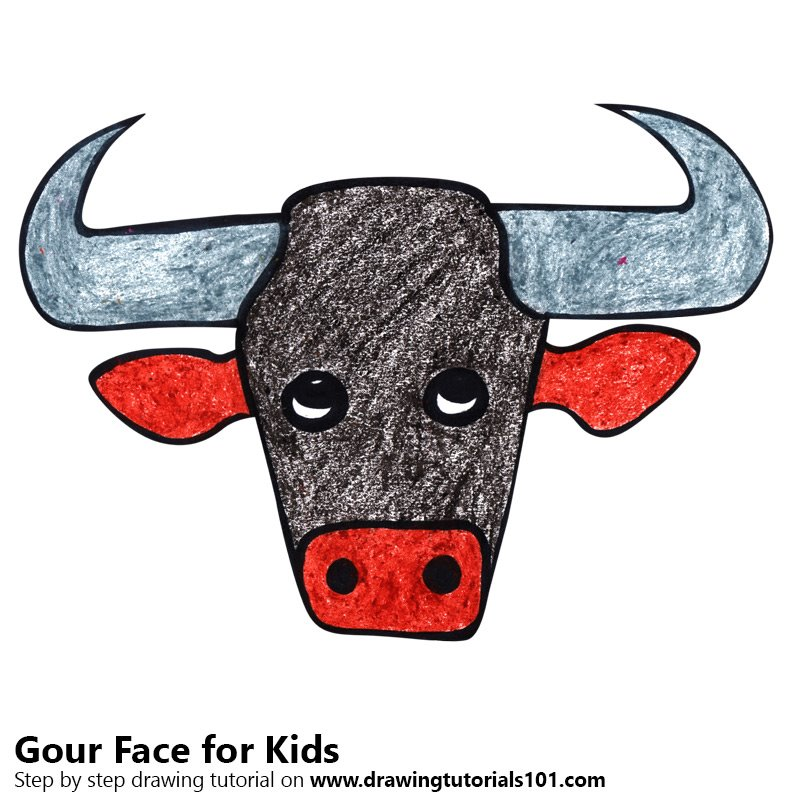 800x800 Learn How To Draw A Gour Face For Kids (Animal Faces For Kids