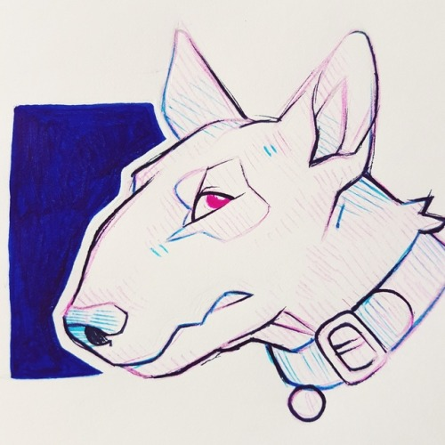 500x500 Bull Terrier Drawing Tumblr