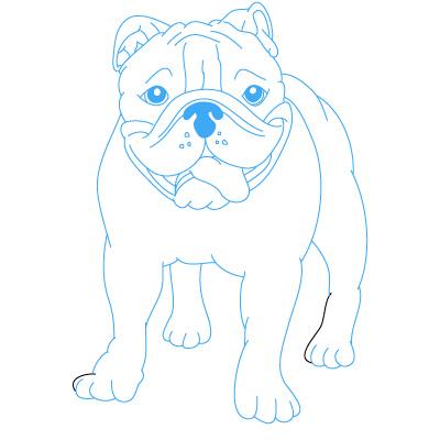 400x400 Drawings Of Cute Bulldogs Anjing Bulldogku