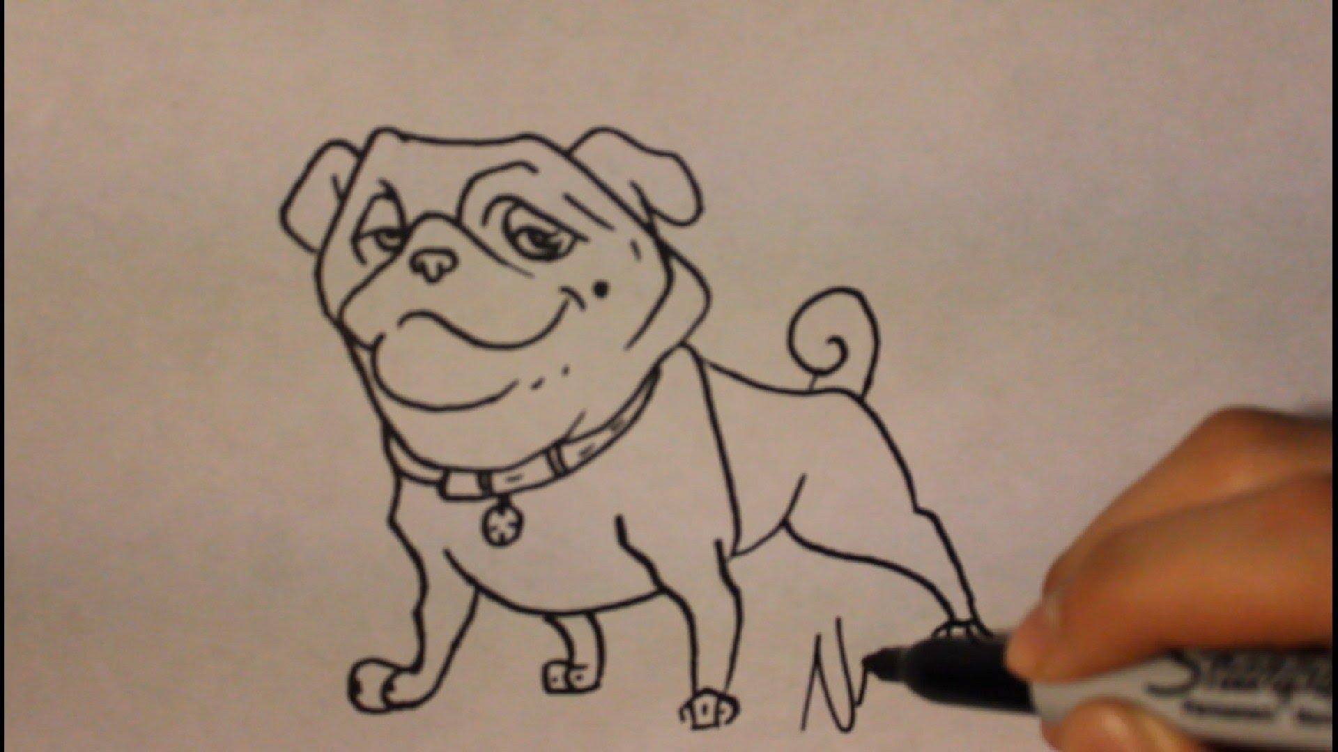 1920x1080 How To Draw Bulldog (Precious) Easy Step By Stepcomo Dibujar Un