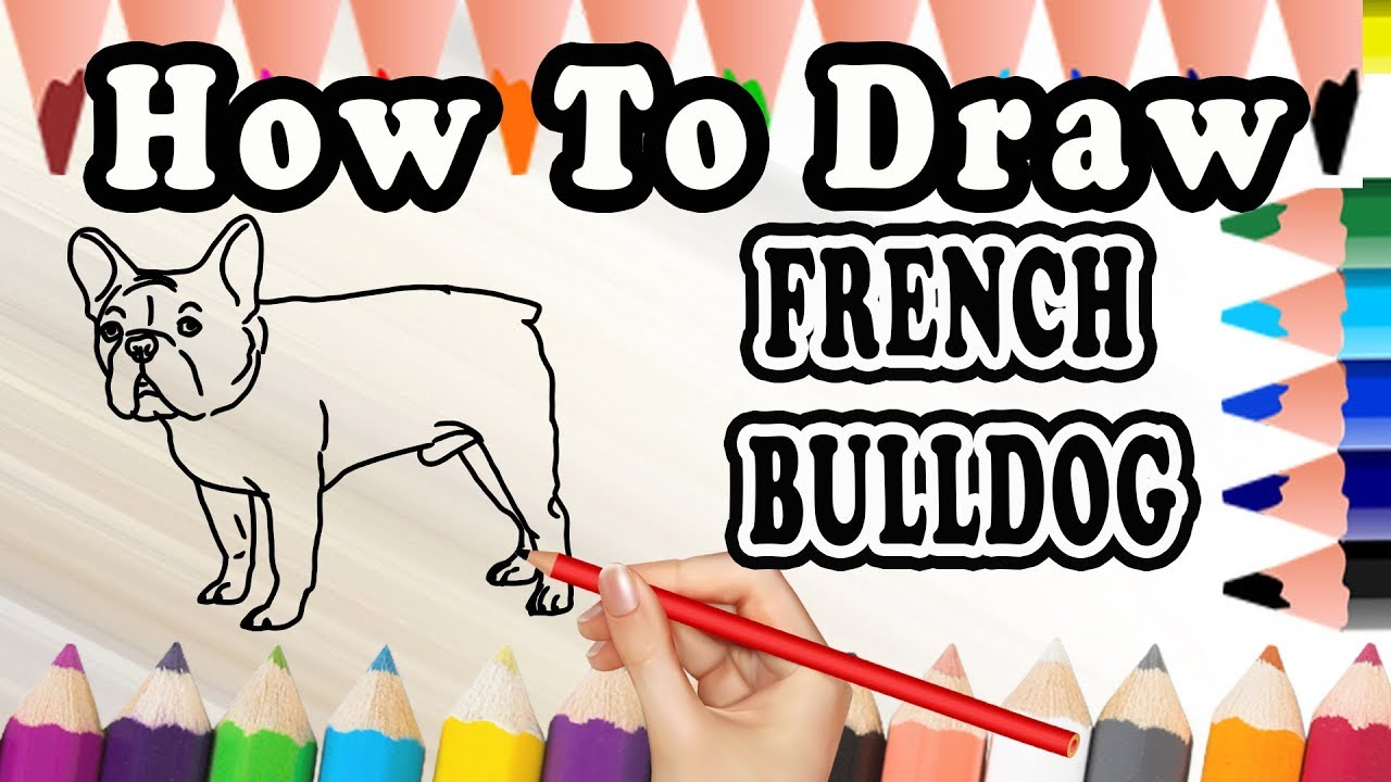 1280x720 How To Draw A French Bulldog Dog Drawing Step By Step French