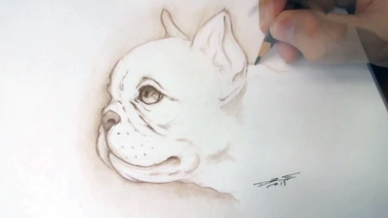 1280x720 How To Draw A Puppy