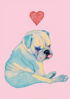 236x333 Easy Chalk Pastel Drawings Of Bulldogs Step By Step