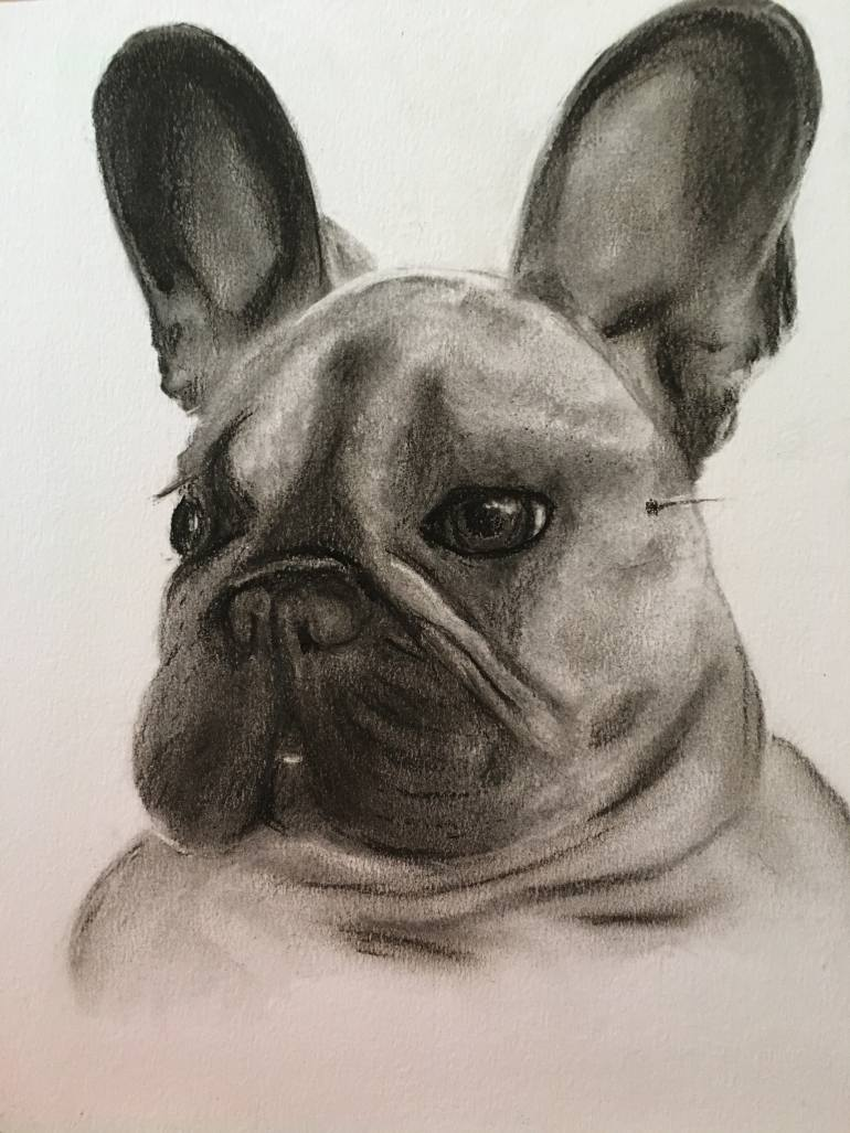770x1027 Saatchi Art French Bulldog Alphie Drawing By Julie E Smith