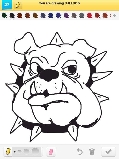 500x667 Bulldog Drawings