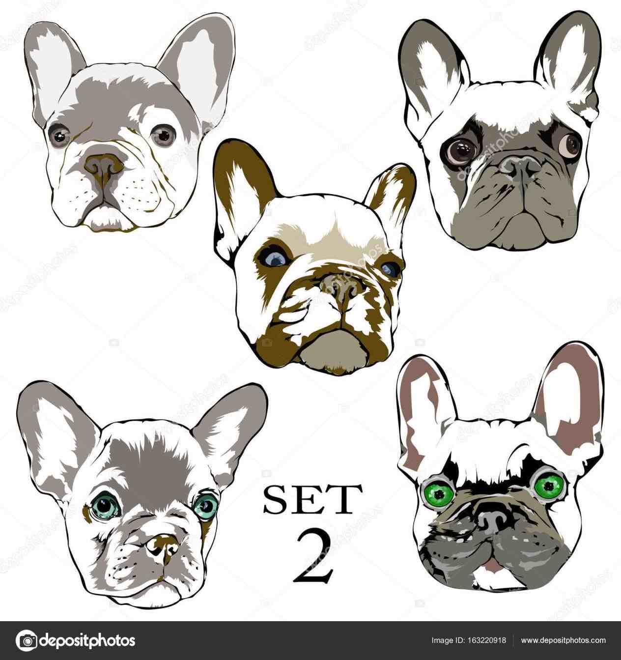 1264x1343 French Bulldog Drawing Step By Step Animalsee.club